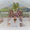 Marquee Wedding at Webersburg