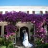 Annelie & Charl's Garden Love