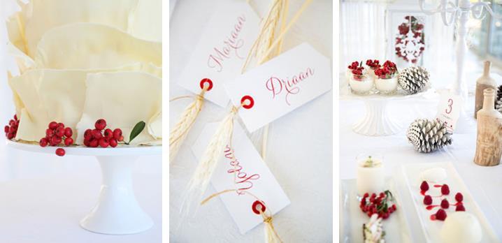 Nicolette Weddings Winter Wedding Shoot (3)