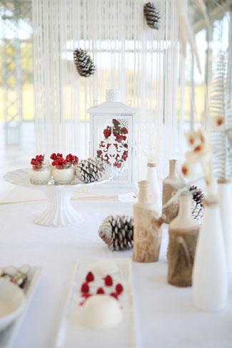 Nicolette Weddings Winter Wedding Shoot (4)